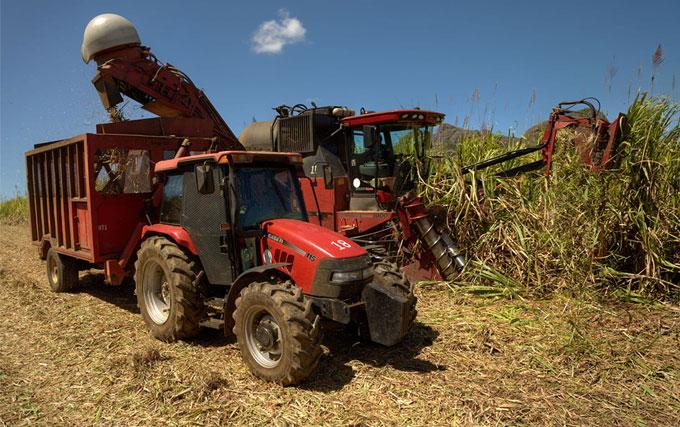 case ih 8000 harvesting case